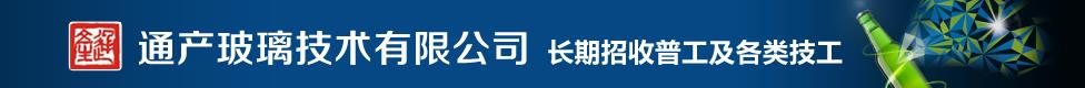 肇庆通产玻璃技术有限公司(大型国有企业)
