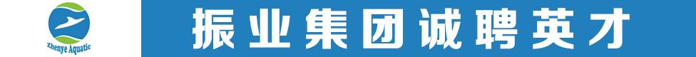 肇庆市振业投资有限公司招聘信息