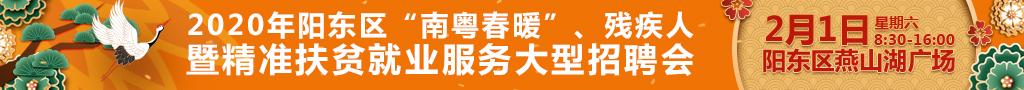 """2020年阳东区""""南粤春暖""""、残疾人暨精准扶贫就业服务大型招聘会"""